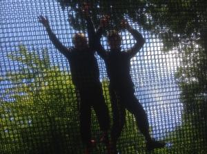 Treetop Nets, Brockhole