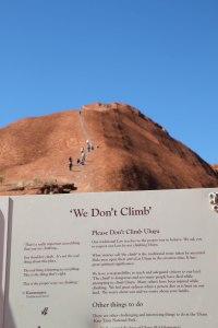 We don't climb, Flavia Brandi